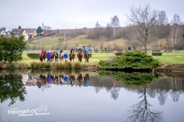 28.1.2021 Valencio Holčák: RH – koně ve výběhu